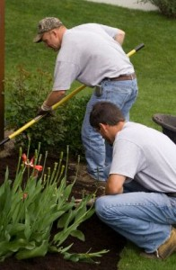 Gardeners.